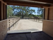 Personalized Equine Care in Sonoma County