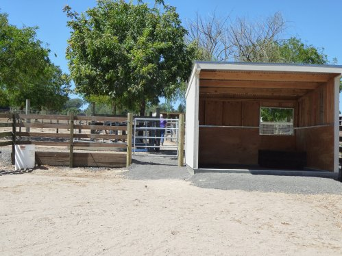 Horse Boarding Facility with Outdoor Shelter